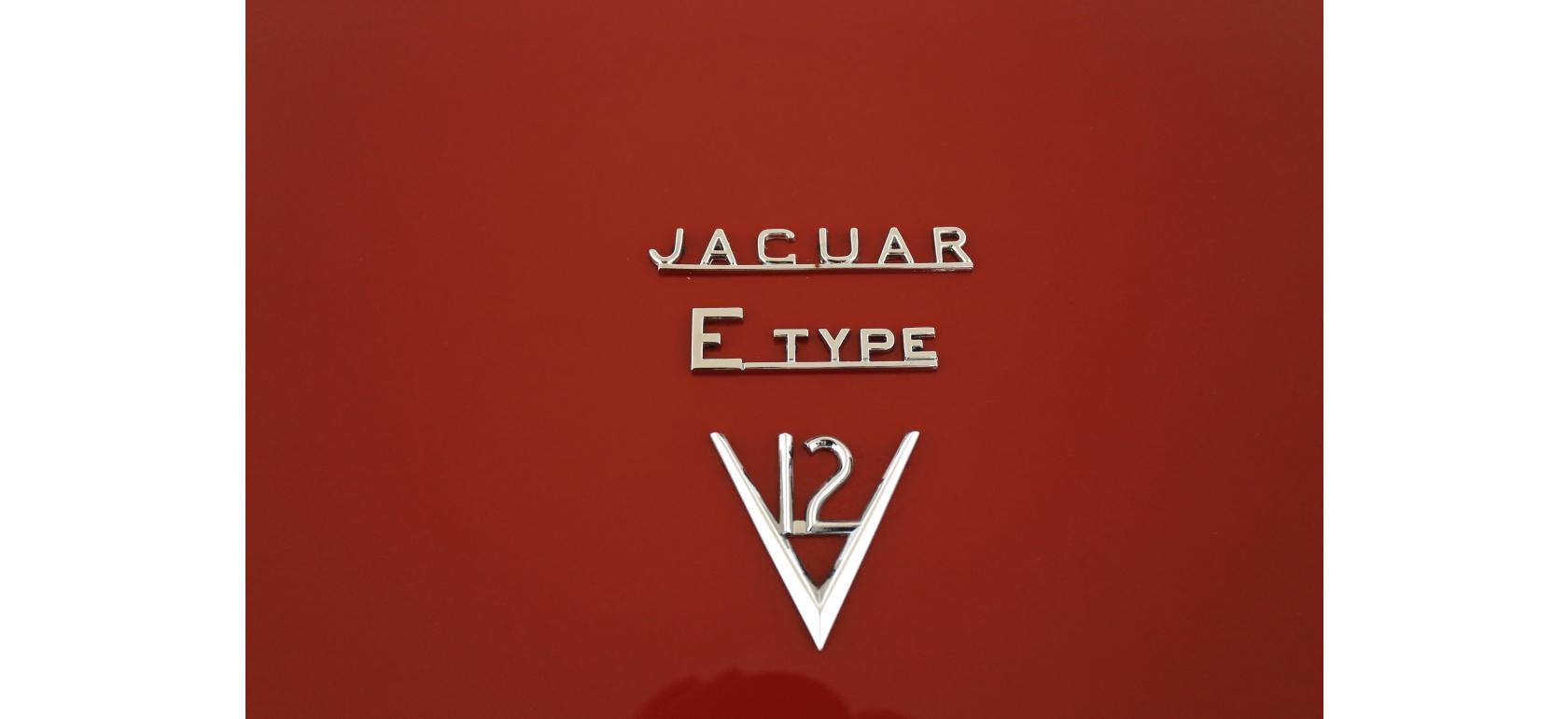 Jaguar_EV12_OTS_logo_10